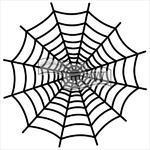 """TCW Šablona 12""""x 12""""  Spiderweb"""