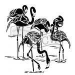 """Šablona TCW 12""""x 12"""" , Flamingos"""