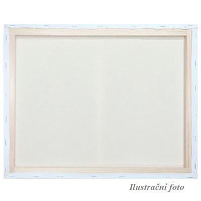 Malířské plátno šepsované 40x50cm
