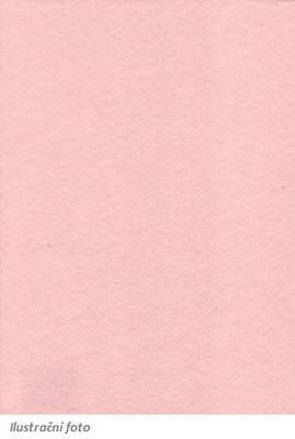Filc 23 x 30 cm - tělový