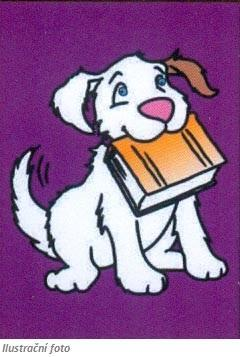 Obrázek pro pískování  23x33 cm - Pes s knihou