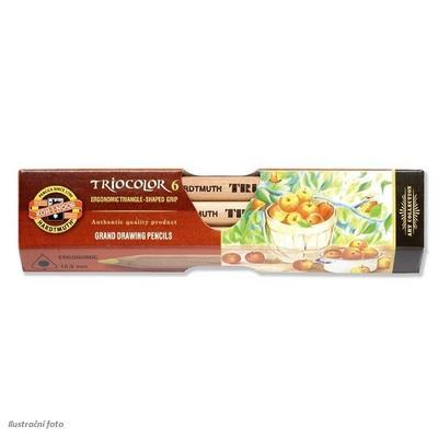 Trojhranné pastelky Triocolor silné - 6 ks přírodní - 1