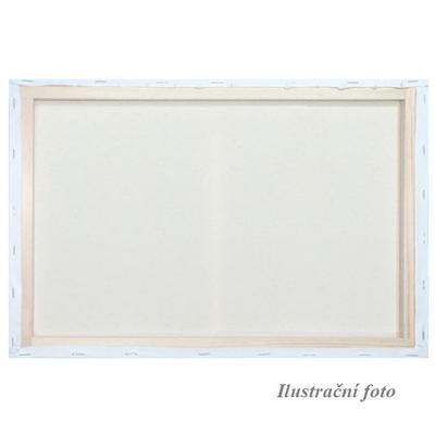 Malířské plátno šepsované 20x30cm