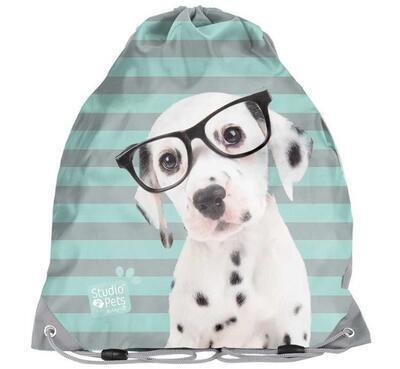 Sáček na přezůvky - pes s brýlemi - zelený