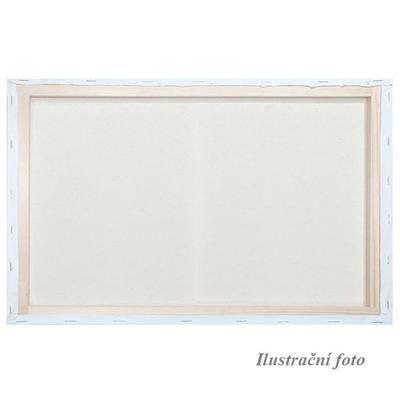 Malířské plátno šepsované 24x30cm