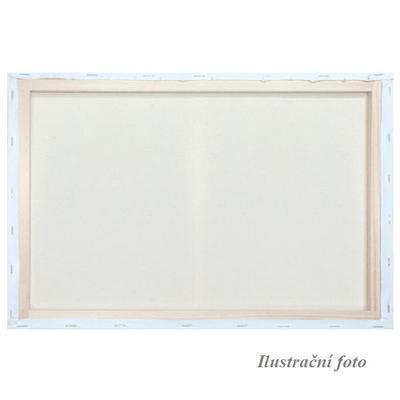 Malířské plátno šepsované 40x60cm
