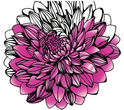 Chameleon Color Tones - 5 ks, Floral Tones - 2