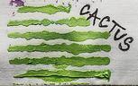 Izink pasta 3D, 75 ml - Cactus, perleťová světle zelená - 2