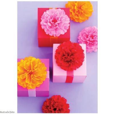 Hedvábný papír 50x70 cm, 20 g/m2, 5 listů - oranžový - 2