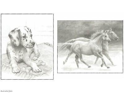 Sketching Made Easy Dog&Horses - sada na skicování dle předlohy - 3