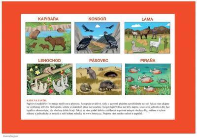 Začínáme vystřihovat - Exotická zvířata - 4