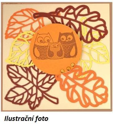 Výřez - Listy 1, podzimní, 12 ks - 4