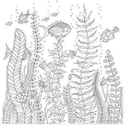 Antistresové omalovánky - Ztracený oceán - 6